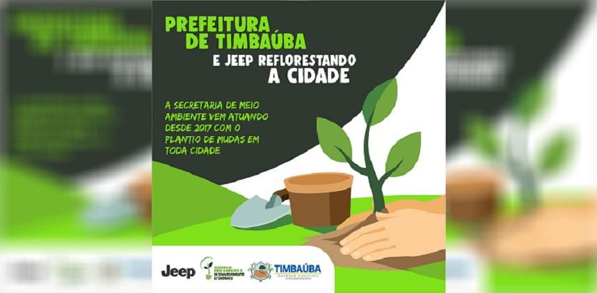 plantacao_arvores_mudas