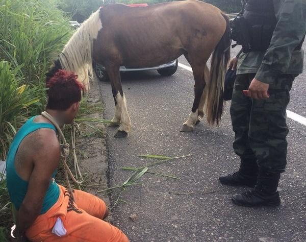 assalto-em-cavalo