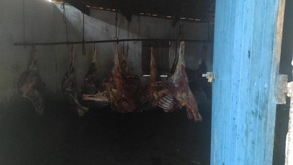carne_de_cavalo