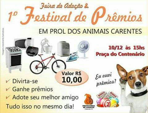 festival_de_premios