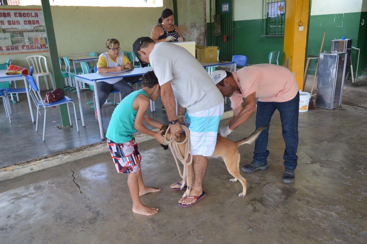 vacinacao_de_animais