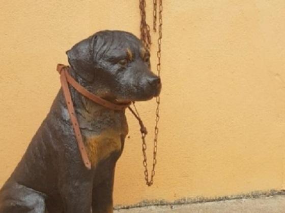 minas_gerais-_cachorro_de_plastico